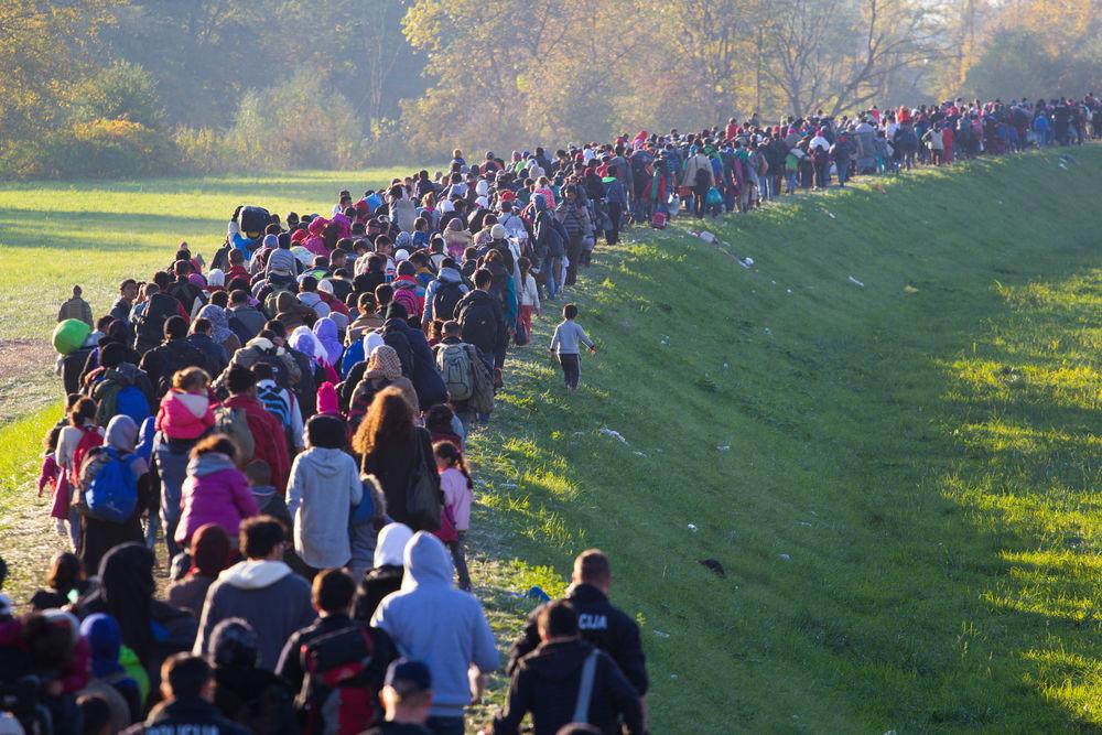 migrační politika