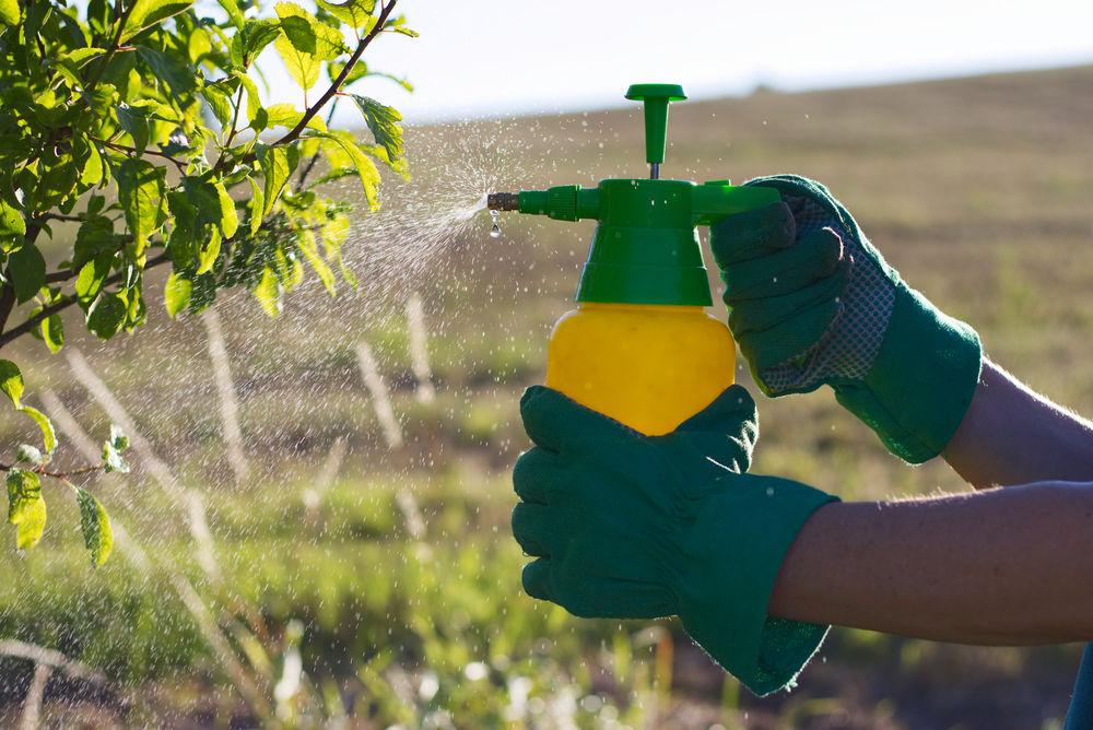 pesticidy zákaz