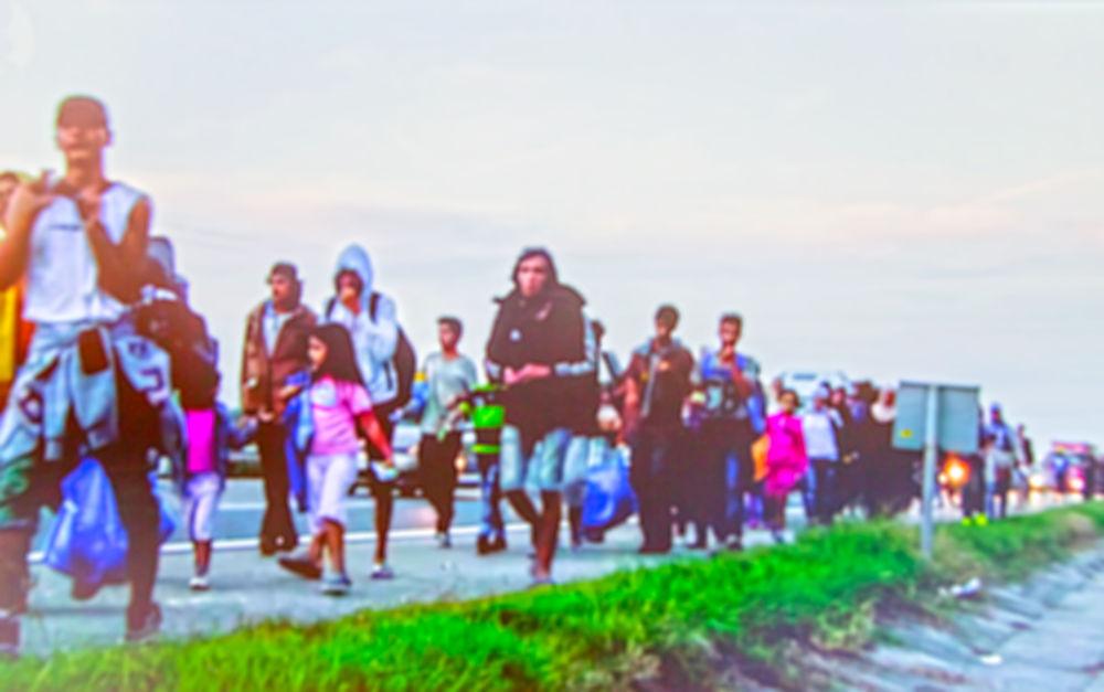 migrace pojmy