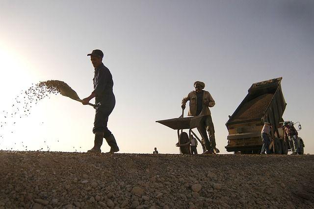 migranti práce