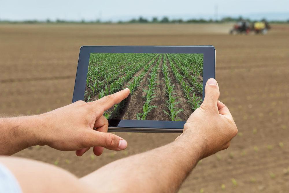 precizní zemědělství